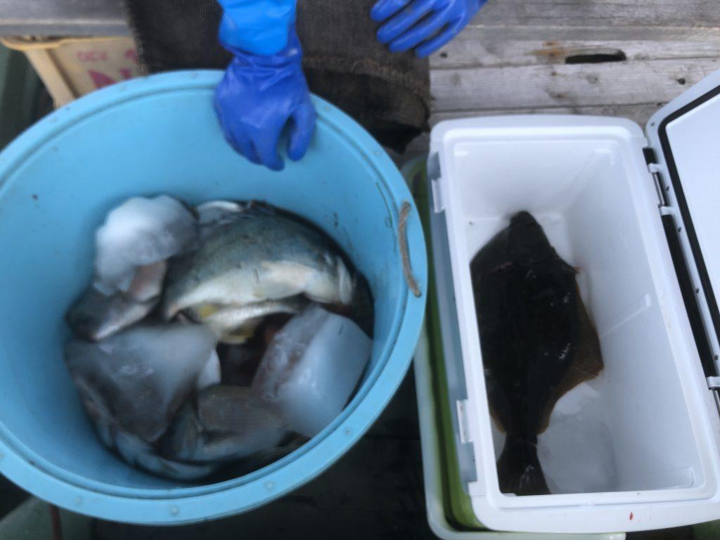 たも漁大漁